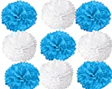 "#8: Party Factory Paper Pom Pom 10"" for Birthday Decoration for Boys Or Baby Shower Decoration (White/Blue)"