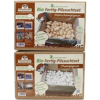 in der Box zu Haus SELBST züchten 4 Pilzzuchten Champignons 2x weiß + 2x braun