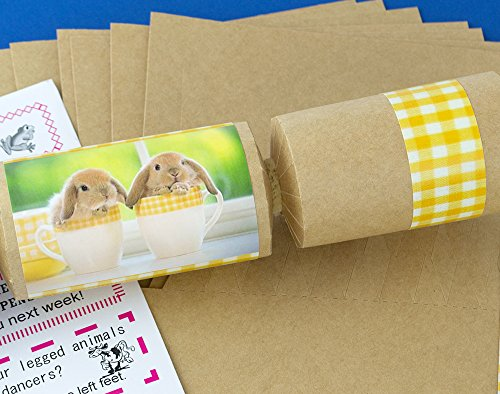 8-kraft-cute-bunnies-make-fill-your-own-easter-party-crackers-kit