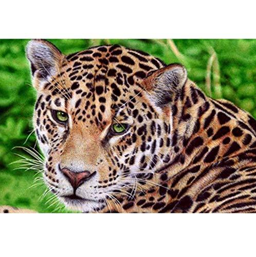 CYKEJISD Puzzle Adulte 1000 Pièces Bricolage Set Animal Leopard Stick Perlent Hobby Puzzle Classique 3D Puzzle Jouet en Bois Cadeau Unique Décoration Intérieure