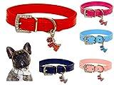 Lushpetz Original Design Hundehalsband aus Leder mit freiem, graduiertem Hundeanhänger XSmall Small Medium Große Größen (Klein, Rot)