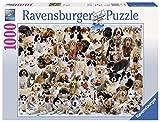 Ravensburger - Cachorros del mundo, puzzle de 1000 piezas (15633 7)
