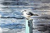Aquarellmalerei. Möwe Handbemalt Einzelarbeit. Aquarell auf Papier. 19 x 28 cm. Zeitgenössische Malerei. Seelandschaft Bild von Vögeln. Blautöne