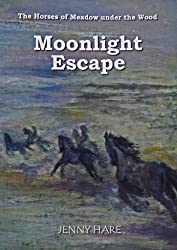 Moonlight Escape: 1 by Jenny Hare (2010-11-30)
