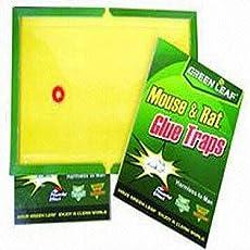 VD Sales, 5 Pcs Mouse & Rat Glue Trap
