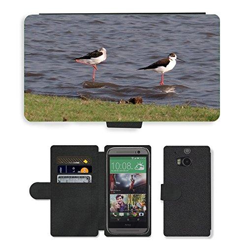 hello-mobile PU LEDER LEATHER FLIP CASE COVER HÜLLE ETUI TASCHE SCHALE // M00137338 Stelzenläufer Gemeinsamen Stelzenläufer // HTC One M8