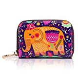 APHISONUK Portafoglio porta carte di credito in vera pelle per donna, Portafoglio/custodia/borsa/tasca con cerniera per ragazze/scatola regalo