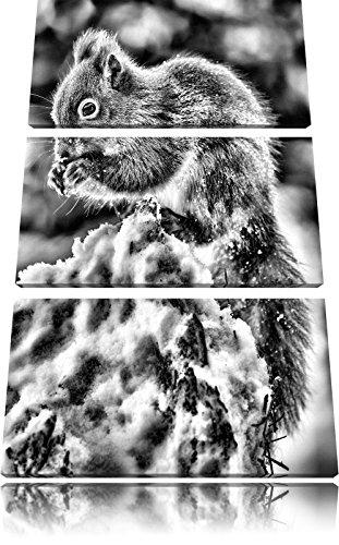 monocrome-kleines-eichhrnchen-im-winter-3-teiler-leinwandbild-120x80-bild-auf-leinwand-xxl-riesige-b