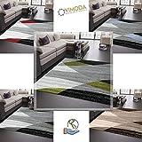 Wohnzimmer Teppich Modern Geometrisches Muster Gestreift Meliert in Rot Grau Weiß Schwarz 60x110 cm