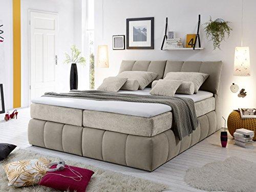 moebel-eins BELMA Boxspringbett Hotelbett Bett amerikanisches Bett 7-Zonen Tonnentaschenfederkern 180 x 200 cm Härtegrad 3 braun-beige, braun-beige