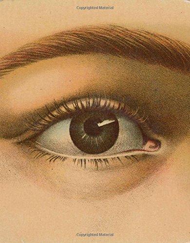 John Derian Picture Book -