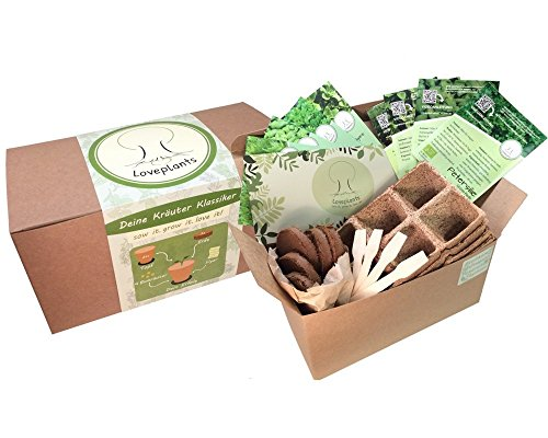 Kräuter Anzuchtset, 4 Sorten Bio Kräuter Saatgut – Kräuter Pflanzset mit Bio Samen, Geschenk Set zu jedem Anlass- perfektes Gechenk Set, verpackt als Geschenk Box, ideales Weihnachtsgeschenk