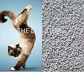 The DDS Store Natural Cheap Price Bentonite Clay Cat Litter (10KG)