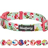 Best Blueberry Pet Pet Beds - Blueberry Pet Spring Scent Inspired Floral Rose Print Review