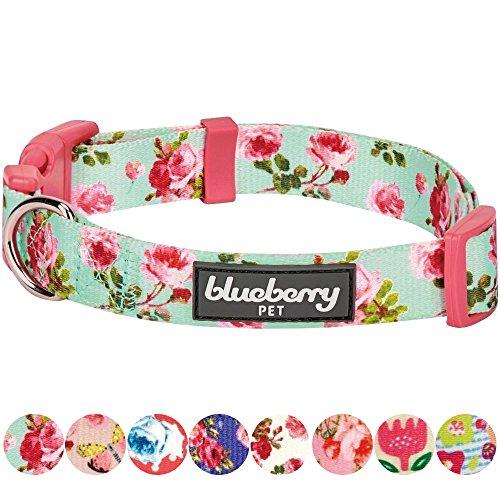Blueberry Pet Frühlingsduft Inspiriertes Geblümtes Rosenmuster Türkis Hundehalsband, S, Hals 30cm-40cm (Türkis Hundehalsband)