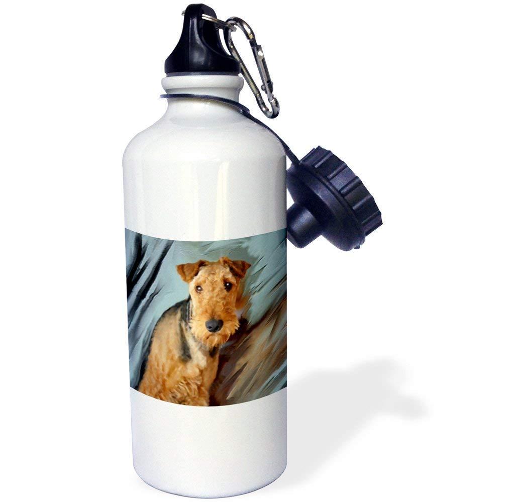 qidushop Airdale Terrier Portrait White Office Work Yoga Bike Camping Sports Water Bottle Present 21oz