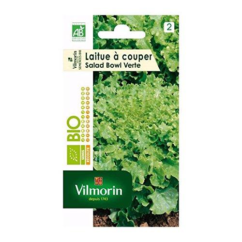 VILMORIN Sachet graines bio Laitue a couper SALAD BOWL Verte