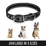BELISY Hundehalsband reflektierend aus Nylon I einfach verstellbar I Schwarz