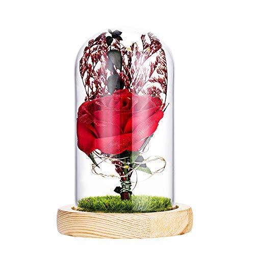 Makalon Schönheit und die Tier-romantische Simulations-Rosen-Glasabdeckung führte...