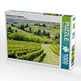 Weinberg bei San Gimignano 1000 Teile Puzzle quer (CALVENDO Orte)