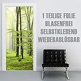 XXL-Tapeten Türtapete selbstklebend TürPoster Beech Forest im Format 90x210cm - Türfolie Klebefolie von Trendwände
