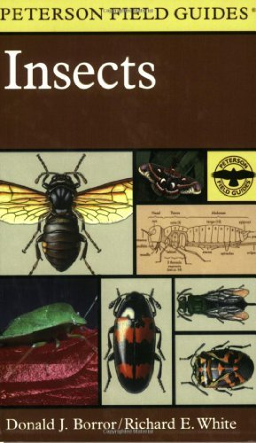 A Field Guide to Insects: America North of Mexico by Borror, Donald J., White, Richard E. (1998) Paperback