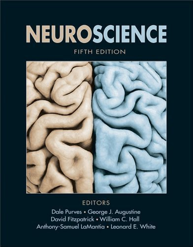 Neuroscience, Fifth Edition by Dale Purves, George J. Augustine, David Fitzpatrick, William 5th (fifth) Edition [Hardcover(2011)]