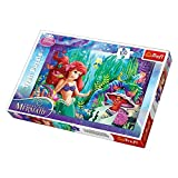 Disney Princess Trefl Hide and Lakek Puzzle (100-Piece, Multi-Colour)