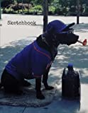 Sketchbook: 8.5 x 11 Large Sketch Book Journal, 'Baseball Dog' Cover, Blank Book for Drawing, Sketching, Doodling, Writing (Art Sketch Pad) White Paper, 100 Durable Unruled Pages (New York Shots)