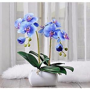 XCZHJ Flores Decorativas Artificiales Decoración de Sala de orquídeas de Flores Artificiales Planta en Maceta Azul Los Productos de Flores Incluye:Flores Artificiales,guirnaldas Artificiales.