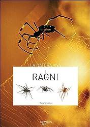 51miw4DWmJL. SL250  I 5 migliori libri sui ragni