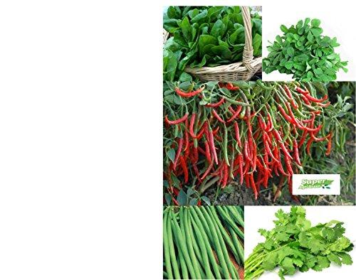 Tradico Spinat, Methi, Dhaniya, Tomaten, Chili, Bohnen - 5 Pkt Samen Combo von Super Agri Green Avg 40/50 + Samen jeder Pkt (Agro-tomaten-samen)