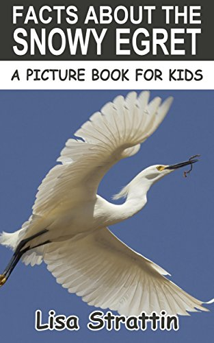 Facts About The Snowy Egret (A Picture Book For Kids 40) (English Edition) - Snowy Egret Tiere