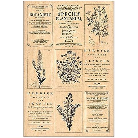 Florilèges Design FHA112037 - Timbro per scrapbooking, fantasia: erbolario, 15 x 10 x 2,5 cm, colore: beige