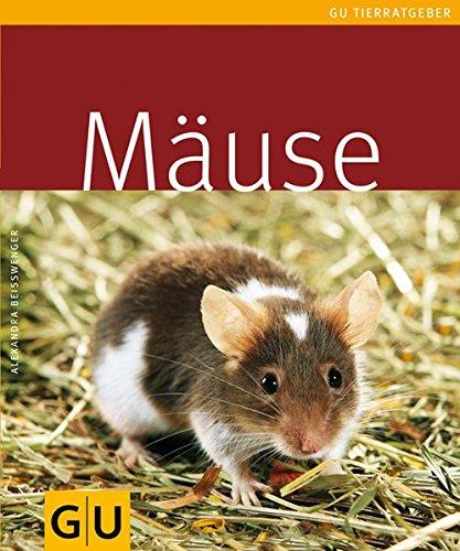 farbmaeuse kaefig Mäuse
