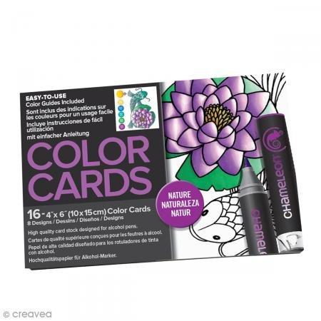 Preisvergleich Produktbild chameleon chm0220016Stück natur Farbe Karten, 10,2x 15,2cm