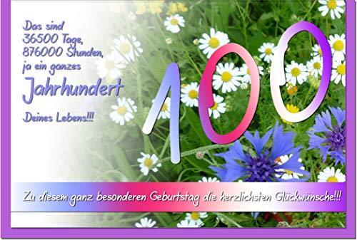 metALUm ZAHLENKARTE 100 | 1018024S