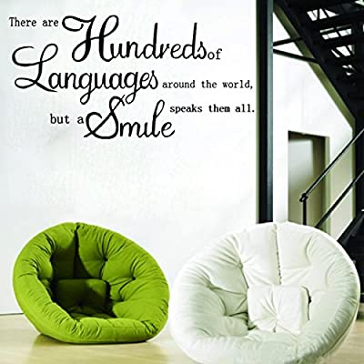 """There Are Hundreds of Languages""DIY Letter Proverb Removable Vinyl Quote Decal Wall Sticker Art Mural Home Decor"