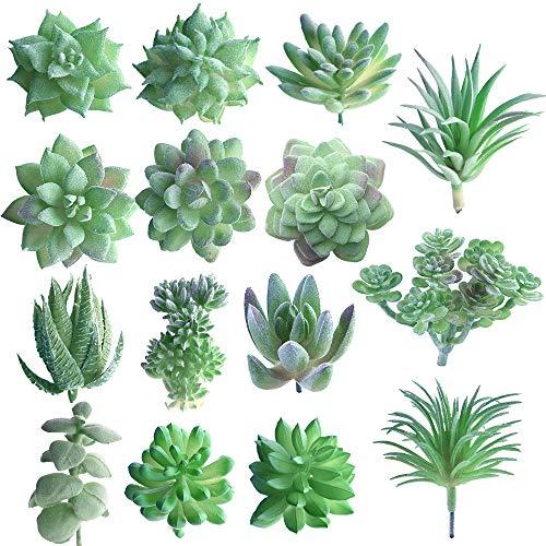 (FEPITO 15 Stück Künstliche Sukkulenten Grün Unfotted Faux Blume Sukkulenten Mini Echeveria Picks Bulk Vorbauten für Zuhause Indoor Fairy Garden Dekorationen)