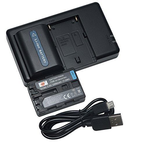 DSTE 2PCS NP-FM55H NP-FM50(2300mAh/7.4V) Batteria Caricatore Kit per Sony NP-FM30,NP-FM51,NP-QM50,NP-QM51,CCD-TRV128,CCD-TR108,CCD-TR208,CCD-TR408,CCD-TR748,CCD-TRV106,CCD-TRV107,CCD-TRV108 Fotocamera