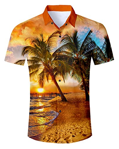 Idgreatim Männer Herren Hemd Freizeit Hawaiihemd 3D Pattern Printed Hemden Shirts Kurzarm Button Down T Hemden Shirt -