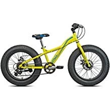 Fat Bike mis. 20 carrat pitbull