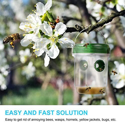 Zoom IMG-3 sayhia 2 trappole per vespe
