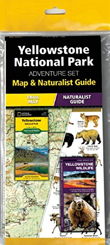 yellowstone-national-park-adventure-set