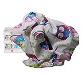 Clevere Kids Mulltücher Little Stars 6er Pack 100% Baumwolle schadstofffrei doppelt gewebt (Eule lila pink-star)