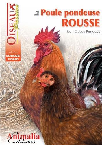 La poule pondeuse rousse