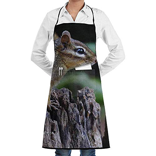 Kostüm Eichhörnchen Braune - UQ Galaxy Küche Schürzen,Schöne braune Eichhörnchen Schürze Lace Unisex Chef verstellbare Lange vollschwarze Küche Schürzen Lätzchen mit Taschen zum Basteln Garten BBQ