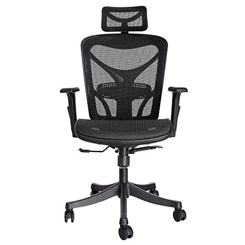 Ancheer Moderner Mesh verstellbarer ergonomischer exekutivbüro Computerstuhl Bürostuhl Hoch Rücken mit Armlehnen in 2 Farbe (Schwarzer Direktoren Rahmen)