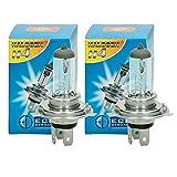 ECD Germany 2er Pack Halogen Lampe H4 55W 4000K 12V mit E4 Zulassung Glühbirne Birne Glühlampe Scheinwerferlampe Autolampe