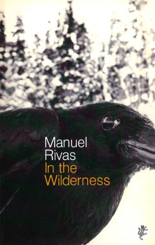 In The Wilderness (English Edition) -
